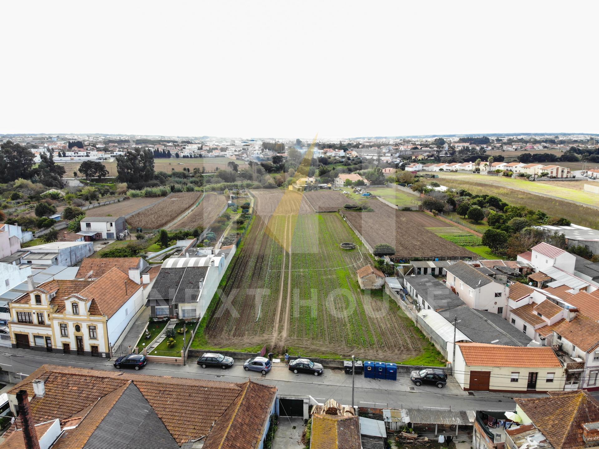 Terreno a 3m do Glicínias  - Aveiro, Aradas